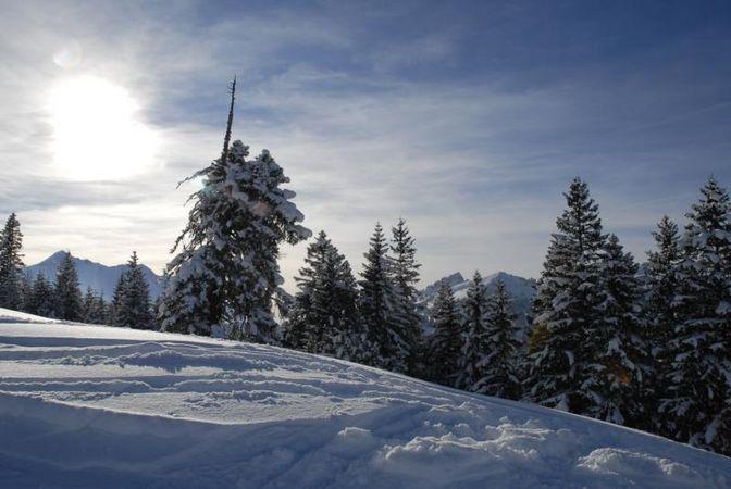 Skihaus SC Giswil / Mörlialp