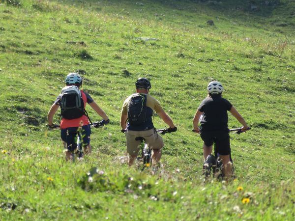 Alpine Cheese Trail by e-bike, Brunni section