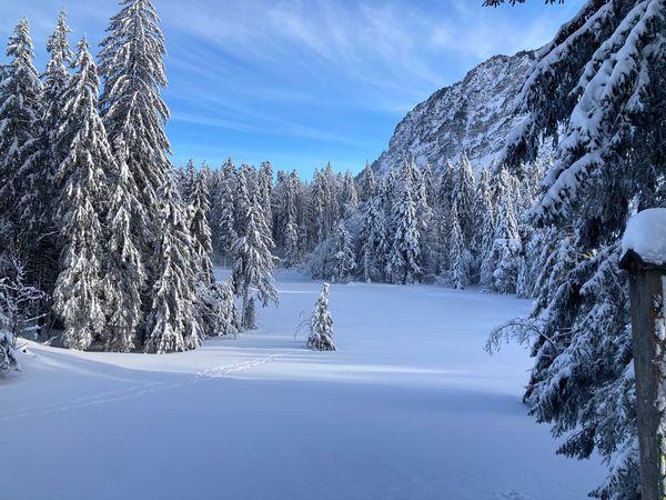 Schneeschuhtrail Iwi-Alp