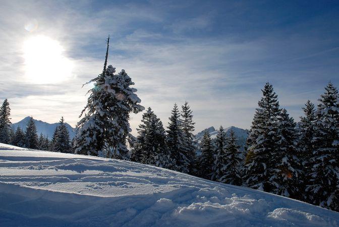 Winterwanderweg Mörlialp - Rinderalp