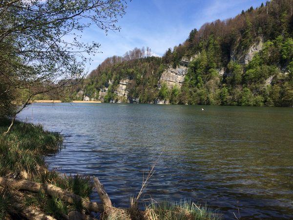 Winterwanderung Wichelsee