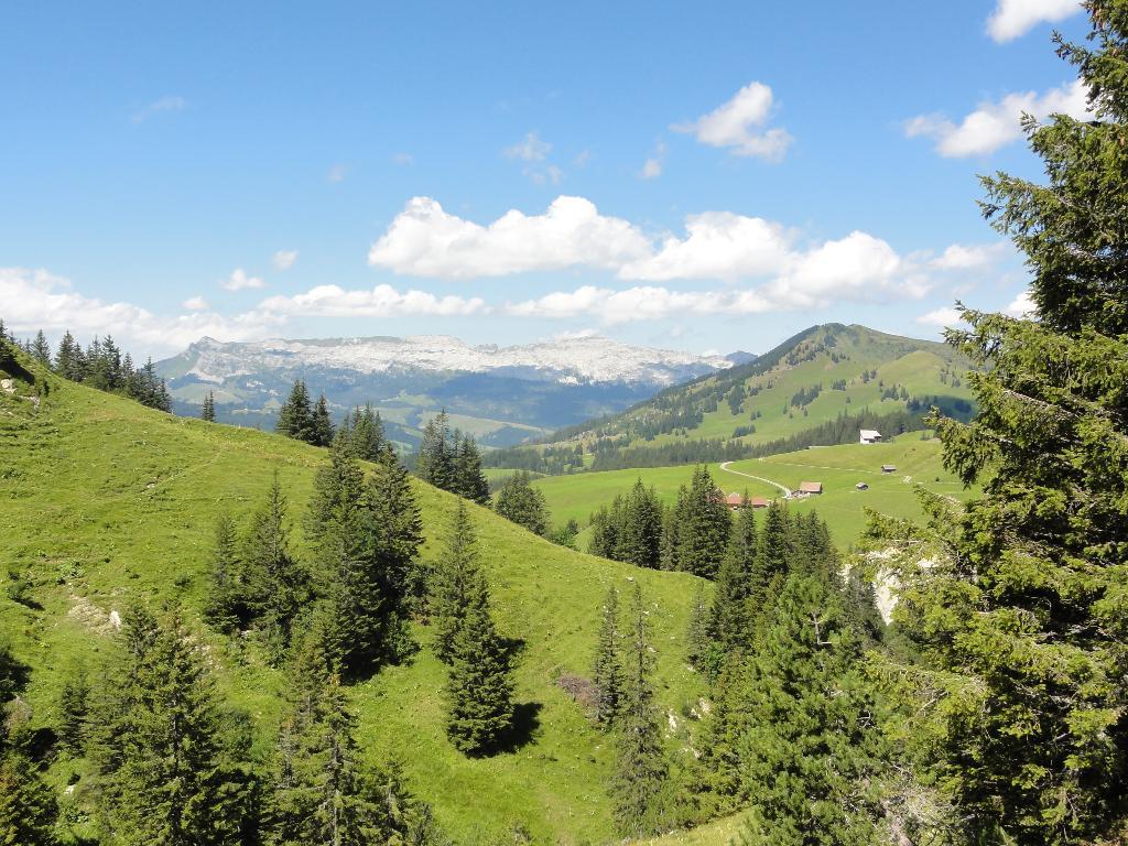 Bärgmandlipfad Giswil - SchweizMobil Route Nr. 576