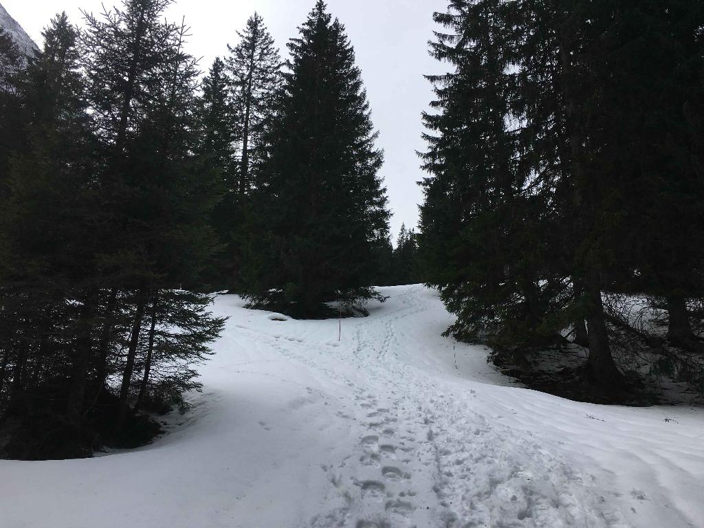 Alpoglen Trail, Mörlialp