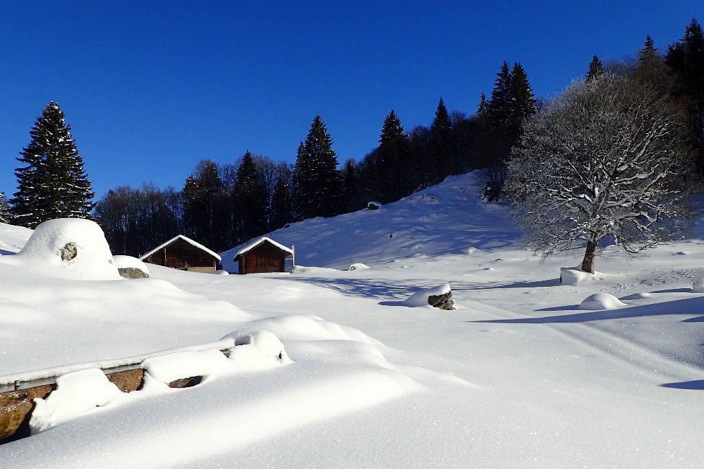 Brünigpass - Ober Brünig - Lungern