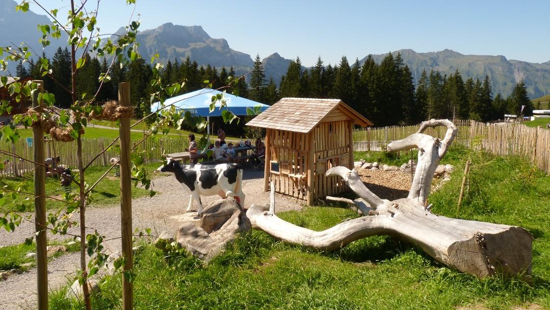 Feuerstellen Globis Alpenspielplatz